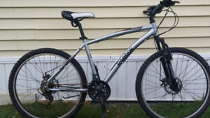 Reebok mountain bike