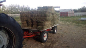 Hay for Sale: small square bales plus 48 round bales