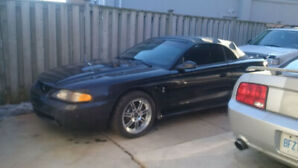 1996 Mustang Cobra Florida  Car