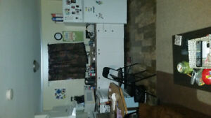 ,2 bedrooms basement suite  are available for rent