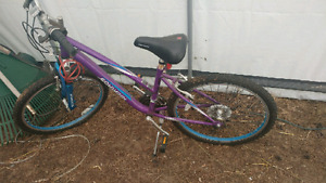 Schwinn youth bike