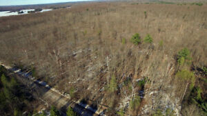 Calling All Outdoor Enthusiasts! 200 Acre Property!