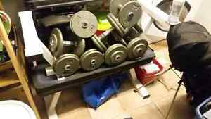 Commercial Flat Benches & Dumbells