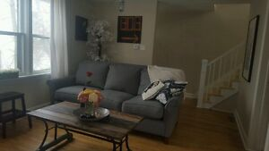 Roommate wanted Armdale  April 1 - must like dogs