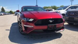 2019 Ford Mustang ECOBOOST 2.3L 101A