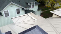 Roof repair /installaation only $65