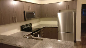 Newly Built Home For Rent In Guelph