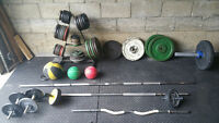 Gym equipment: weights - bars - rack - rubber mats - and more!