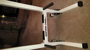 Tricep Chest Peck Dip Station Mint Condition
