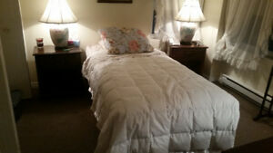 $99 Must sell SINGLE SEALY COMPLETE  BED LIKE New