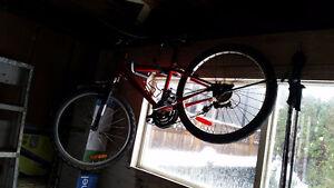 Youth bike $20.
