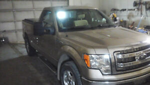 2013 Ford F-150 Xlt Pickup Truck Reg. Cab Long Box