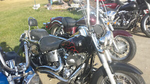 2007 softail deluxe.