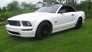 2006 Ford Mustang GT Convertible BEFORE STORAGE PRICE