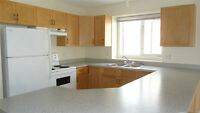 3 Bed 2 Bath Upper Level Suite - Available September 1st