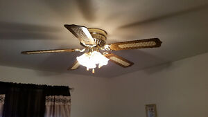 """Ceiling fan 48"""" w/4 lights"""