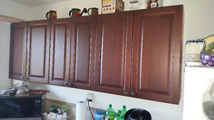 Upper kitchen cabinets and Range hood
