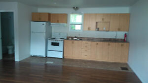 1 Bdr Apt Available for May 1st 900/mnth