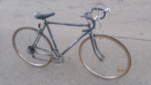 Altima 1990's 10 speed road bike