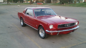 Rare 1966 Ford mustang