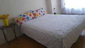 One  room for rent available on june 1st