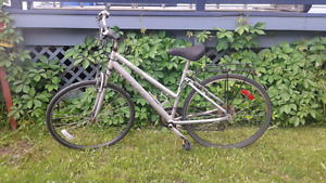 "Womans 26"" bicycle"