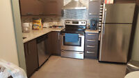 Beautiful New construction Furnished 2 BR 4 1/2 apartment 4 rent