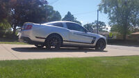 2010 Ford Mustang GT Coupe MINT