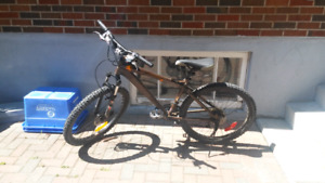 Specialized nakamura mountain bike