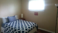 Furnished Room for Rent $550