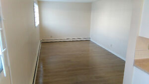 Fully Renovated 1-bedroom apartments on Whyte avenue