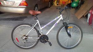 Womens/youth 10 speed bike