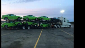 Volvo 780 truck and Orange Blossom Car Carrier