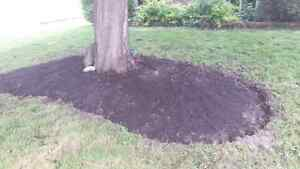 Outdoor cleanups Cornwall Ontario image 2