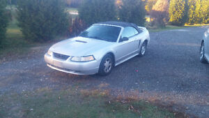 2000 Ford Mustang 3.8L Convertible