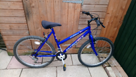 Ladies British Eagle Mountain bike