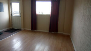 2 bdrm daylight basement suite downtown for rent - newly renoed!