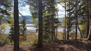 Terrain résidentiel à Gaspé (Bord de l'eau)