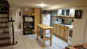 1 Bedroom Basement Apt. Mins To Ossington TTC Station!