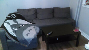 Ikea Couch with Storage Space