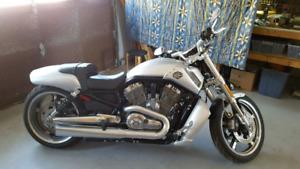 Harley Davidson V Rod muscle 2009