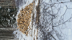 Birch firewood 225 and delivered