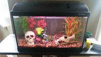 Fish Tank with Accessories and 5 Tetras