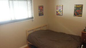 Room in shared furnished house near Whyte / University