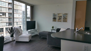 1 Bedroom Furnished Downtown Yaletown