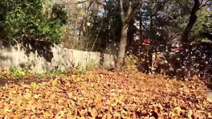 Fall Clean-ups by Local Property Care Co. Peterborough Peterborough Area image 3