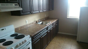 Near HSC- GREAT PRICE Reno'd Bachelor apartment, Includes Water