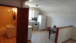 Large 1 bedroom apartment