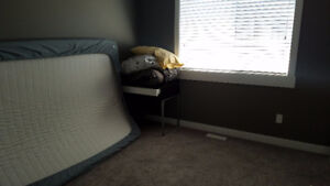 West Calgary Cozy Room for Rent