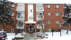 Fully renovated 1 bedroom Perfect apartments on 82 ave